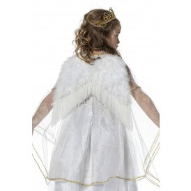 Vleugels wit (35x30cm)