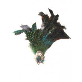 Ring vogel met veren
