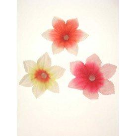 Bloemen assortie gekleurd+licht
