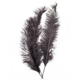 Spadonis veren zwart (Piet veren)