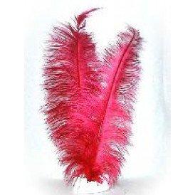 Spadonis veren rood (Piet veren)