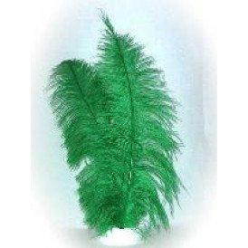 Spadonis veren groen (Piet veren)