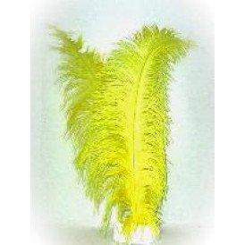 Spadonis veren geel (Piet veren)