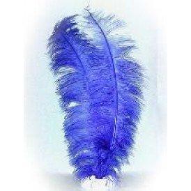 Spadonis veren blauw (Piet veren)