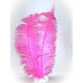 Spadonis veren pink (Piet veren)