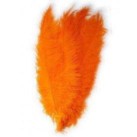 Spadonis veren oranje (Piet veren)