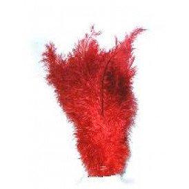 Floss veren rood (Piet veren)