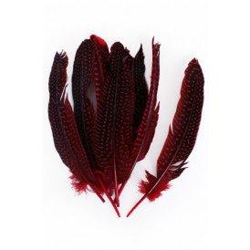 Veren parelhoen 15/20 cm 10 stuks rood