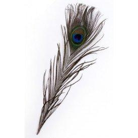 Veren pauw 25-30 cm 10 x