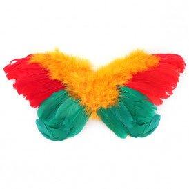 Engelen vleugels rood/geel/groen volwassenen 68 x 50 cm