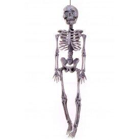 Skelethoofd hangend 40 x 11 cm. (Halloween)