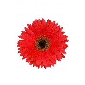 Bloem Gerbera rood met pin en haarclip