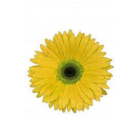 Bloem Gerbera geel met pin en haarclip