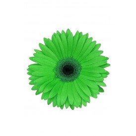 Bloem Gerbera groen met pin en haarclip