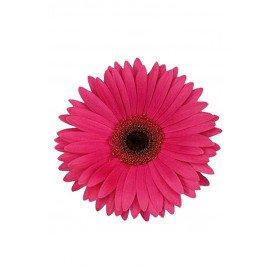Bloem Gerbera roze met pin en haarclip
