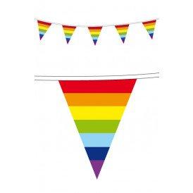Vlaggenlijn pe 10 m Regenboog