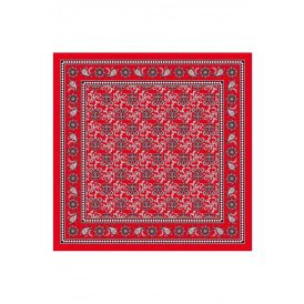 Boerenzakdoek rood waaier motief 63x63 cm